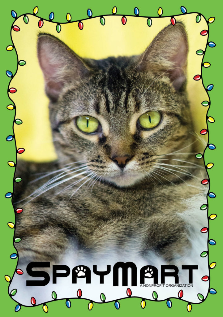Spaymart Annual Before and After Christmas Appeal